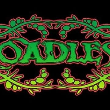 Foto band emergente RoadLess