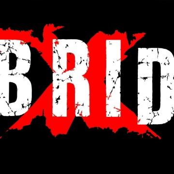 Foto band emergente IBRIDI