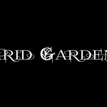 Foto band emergente Arid Garden