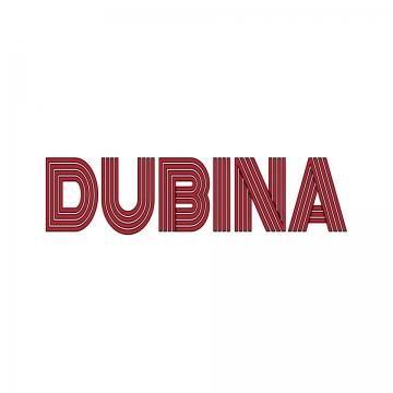 Foto band emergente DUBINA