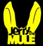 Foto band emergente Jerry The Mule