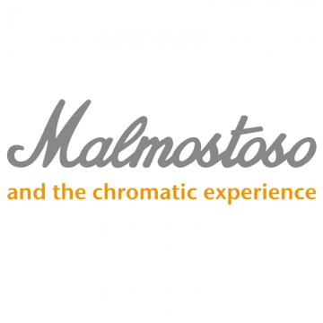Foto band emergente Malmostoso & the Chromatic Experience