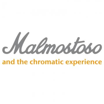 Foto band emergente Malmostoso & the Chromatic Experience