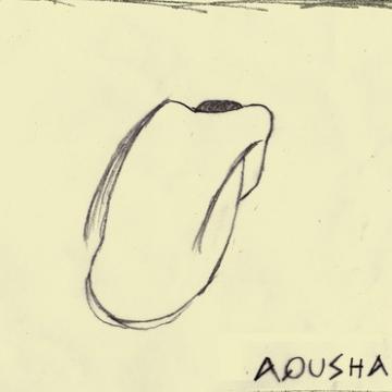 Foto band emergente AQUSHA
