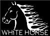 Foto etichetta discografica White Horse Network