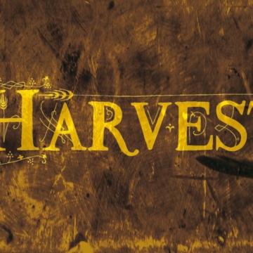 Foto band emergente Harvest
